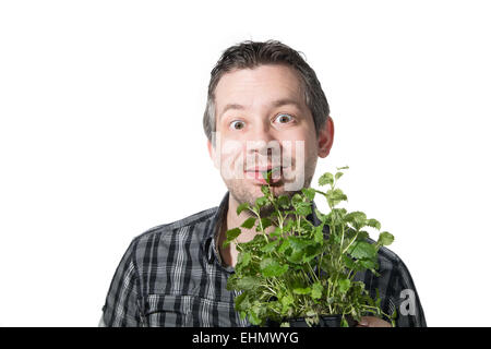 Picture of a man that is eating a green plant - Stock Image