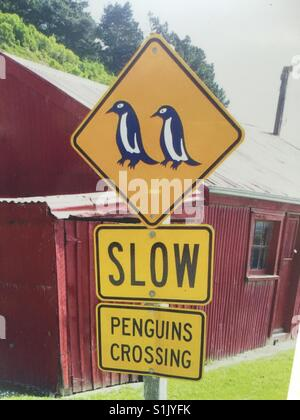 Penguin crossing sign in New Zealand - Stock Image