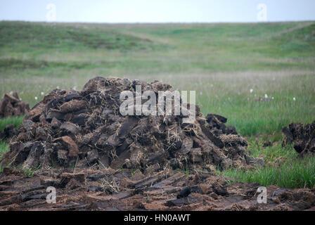 peat bog cutting - Stock Image