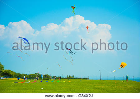 Kite flying in Otterspool South Liverpool on a sunny summers day in Liverpool, Merseyside England UK, Kites at Otterspool - Stock Image