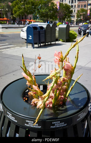 flowers in the garbage - Stock Image