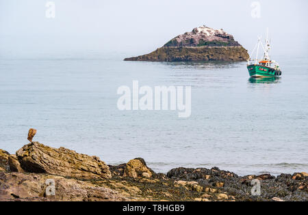 Dunbar fishing boat in calm sea next to small rocky island with seabirds, Firth of Forth, East Lothian, Scotland, UK - Stock Image