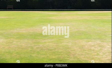 Tennis ball on bowling green - Stock Image