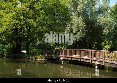 Deutschland, Nordrhein-Westfalen, Werl, Kurpark - Stock Image