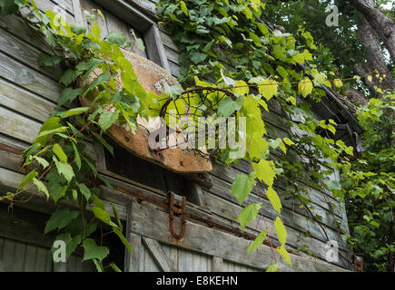 old basketball hoop on barn - Stock Image