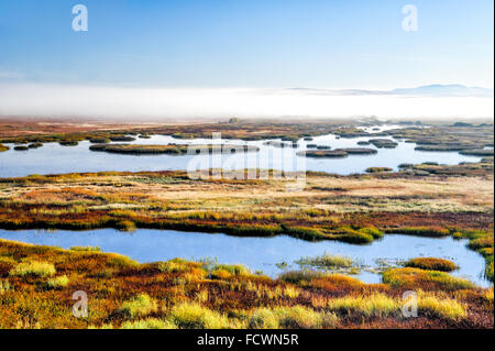 The wetlands of Malheur National Wildlife Refuge from the Buena Vista Overlook. - Stock Image