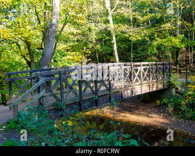 Timber footbridge over the Skelton Beck stream in the Saltburn Valley Gardens North Yorkshire England - Stock Image