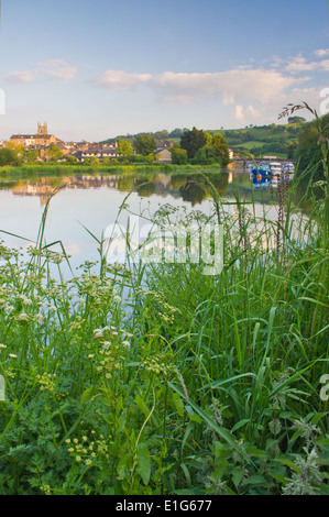 The River Dart flowing through The Plains area of Totnes - Stock Image