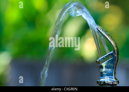 Drinking Water Fountain - Stock Image