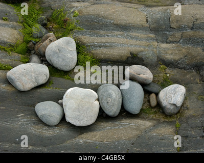 A series of pebbles resting on rock and seaweed - Stock Image