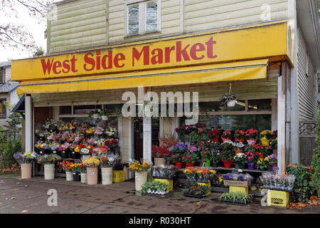 Bunches of colorful cut flowers for sale outside a traditional corner grocery store in Dunbar, Vancouver, BC, Canada - Stock Image