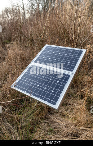 Solar panel among trees and grass, winter - Stock Image