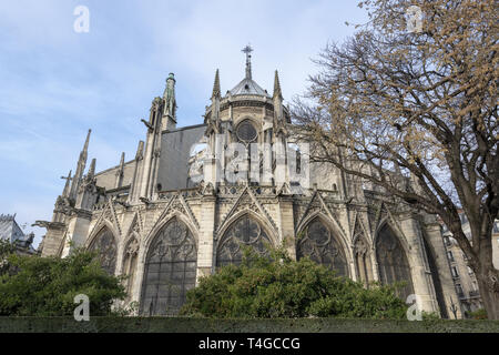 FRANCE, Paris, The Cathédrale Notre-Dame de Paris in 2017 - Stock Image