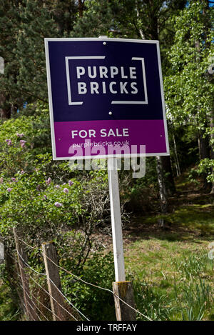 Purple Bricks 'for sale' sign in a rural setting in near Newtonmore, Scotland, UK. - Stock Image