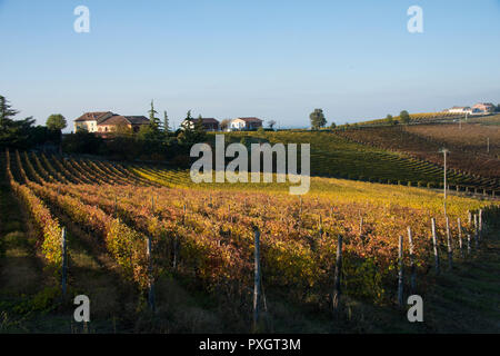 View over the vineyards just outside the small town of Monferrato in Piedmont, Italy - Stock Image