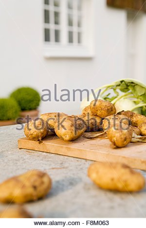 New potatoes and kohlrabi on a garden table - Stock Image