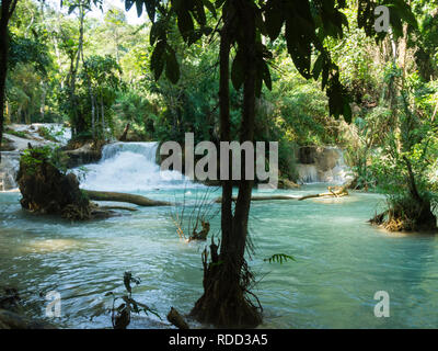 Middle part of three tiered Tat Kuang Si Waterfalls in Kuang Si Waterfalls Park  near Luang Prabang Laos Asia in unspoilt pristine jungle area - Stock Image