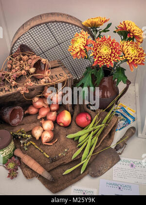 Hoticultural art exhibit displayed at Harrogate Autumn Flower Show, North Yorkshire, UK - Stock Image