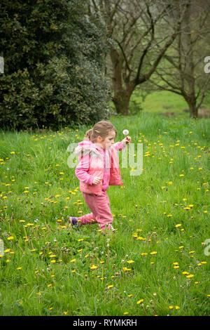 5 year old girl running through dandelions - Stock Image