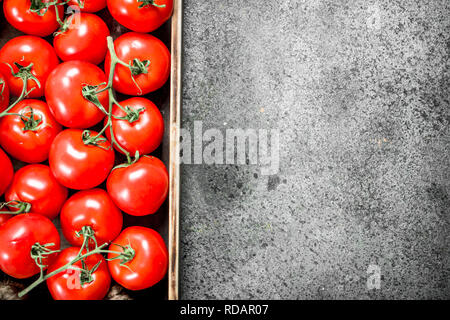 Ripe tomatoes on a wooden tray. On rustic background. - Stock Image