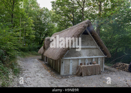Anglo Saxon house recreated at Weald & Downland Museum, Chichester, West Sussex - Stock Image
