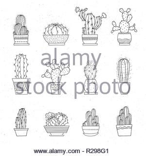Decorative potted cacti. Vector set of hand-drawn sketched elements isolated on white background. Can be used as a print on t-shirts, bags, stationery - Stock Image