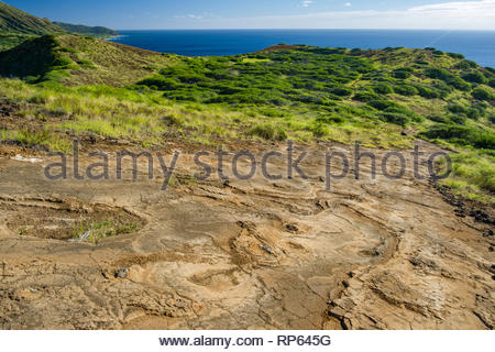 Trail on harden lava flow on the East of Koko Head, Koko Head District Park, Hawaii Kai, Oahu, Hawaii, USA - Stock Image