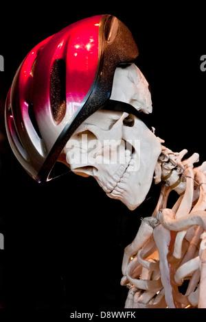 Profile of a Skeleton wearing Bicycle Helmet, black background - Stock Image
