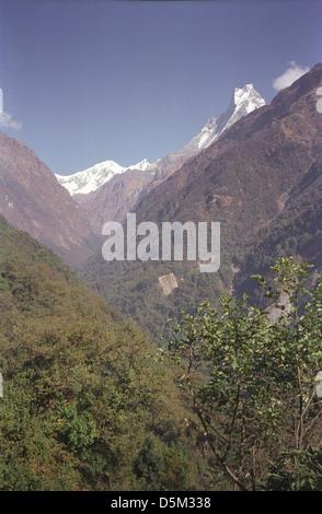 Modi Khola Valley near Sinuwa on Annapurna circuit with peaks of Gangapurna Annapurna III and Machhapuchhre behind - Stock Image