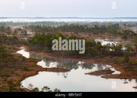 A beautiful and colorful landscape of a marsh in sunrise - Stock Image