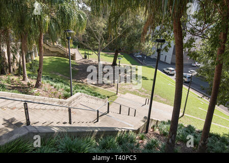 Frog Hollow Reserve in the Sydney suburb of Surry Hills provides much needed open green space in an increasingly high density suburb - Stock Image
