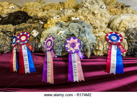 Prize ribbons fleece wool at the Royal Agricultural Winter Fair in Toronto Ontario Canada. - Stock Image