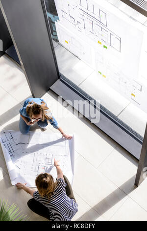 Colleagues brainstorming over plans - Stock Image