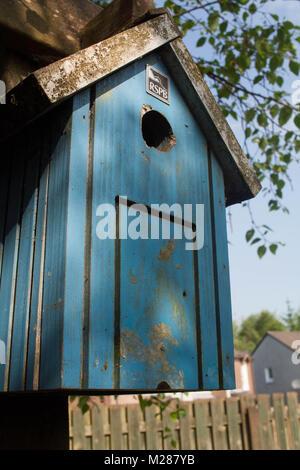 urban bird box - Stock Image
