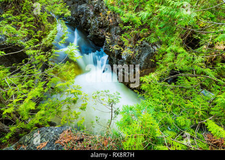 Eramosa River flowing through gorge in Spring, Everton, Ontario, Canada - Stock Image