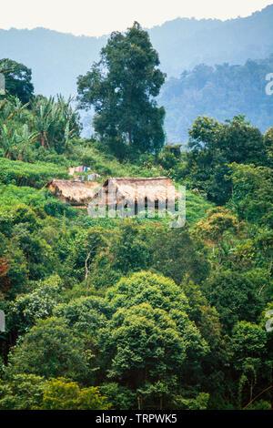 Orang Asli forest stilt house, Pahang, Malaysia - Stock Image