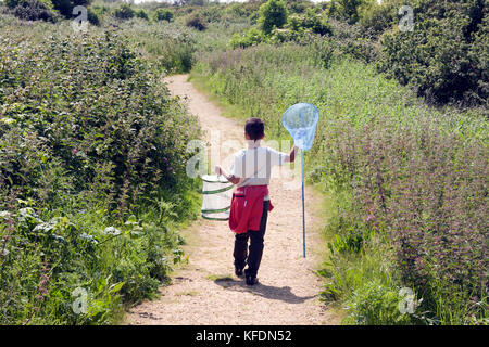 boy out on bug safari, Pagham Nature Reserve, West Sussex, England - Stock Image