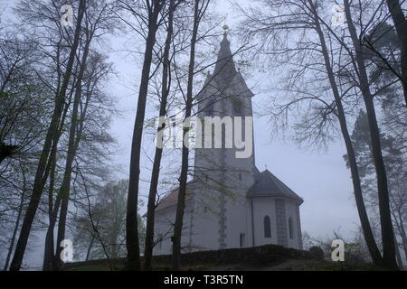 Sv Magdalena church at top of a hill on forest on a foggy misty morning,  view from low through the trees in Slovenia. - Stock Image