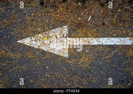 White arrow on the pavement under the needles ate - Stock Image