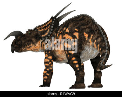 Einiosaurus was a Ceratopsian herbivore dinosaur that lived during the Cretaceous Period in North America. - Stock Image