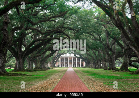 Oak Alley Plantation USA, view of the tree-lined approach to the grand house in Oak Alley Plantation (now a museum), Louisiana, USA - Stock Image