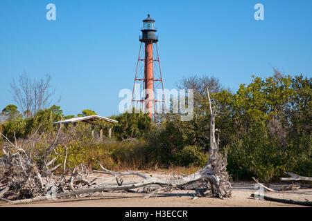 The skeletal square pyramidal brown tower of Anclote Key Lighthouse rises 110ft above the sabal palms & weathered - Stock Image