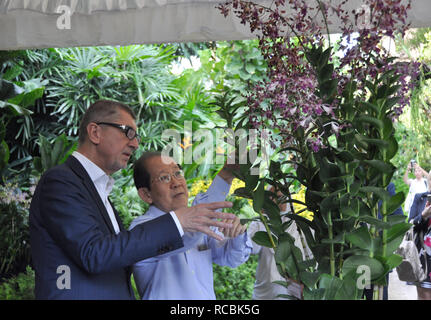 Czech Prime Minister Andrej Babis (left) continued his visit of Singapore on January 15, 2019. Babis visited the Singapore National Orchid Garden where one of the orchids now bears his name. When christening the 'dendrobium Andrej Babis,' he told reporters it was a local tradition but it was unusual to name flowers after a man. (CTK Photo/Radek Jozifek) - Stock Image