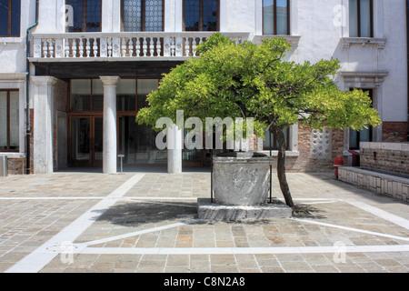 Pozo in the courtyard of Universita Ca'Foscari, Venice, Italy - Stock Image