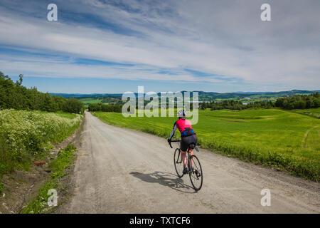 Gravel roads around Borgjafjorden north of Trondheim, Norway. - Stock Image