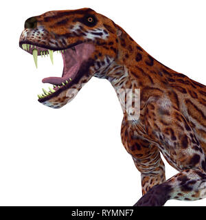 Lycaenops Cat Head - Lycaenops was a carnivorous cat-like dinosaur that lived in South Africa during the Permian Period. - Stock Image