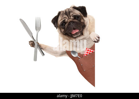 smiling pug dog wearing leather barbecue apron, holding up cutlery for eating meal, with blank banner isolated on - Stock Image