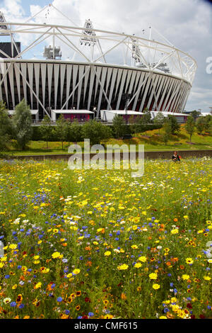 Great British Garden wildflower meadow with Athletics Stadium on a sunny day at Olympic Park, London 2012 Olympic - Stock Image