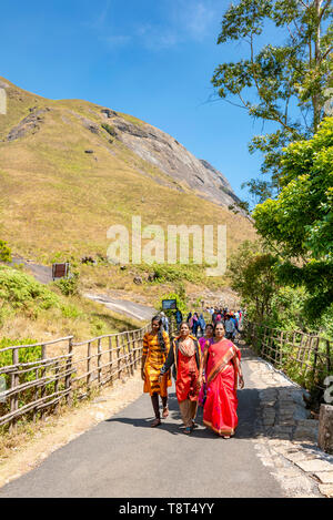 Vertical view of a group of people dressed in sarees walking along a trail in Eravikulam National Park in Munnar, India. - Stock Image