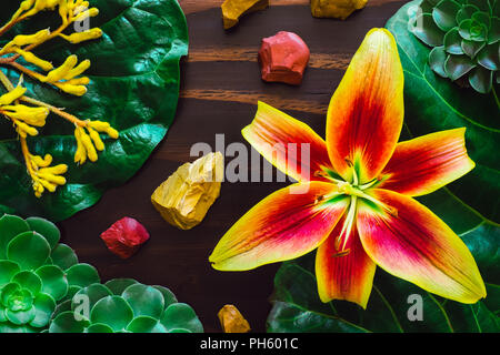 Yellow Lily with Red and Yellow Jasper and Mixed Botanicals on Wood Table - Stock Image